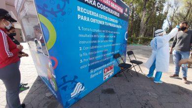 Coronavirus cifras en Hidalgo