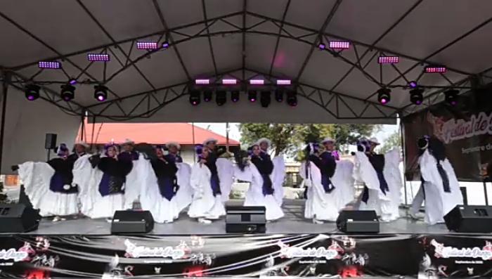 Arranca Expo Virtual Academias de Danza de Hidalgo