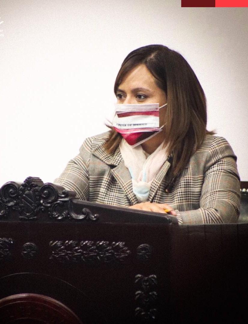 Coordinadora Morena en el Congreso