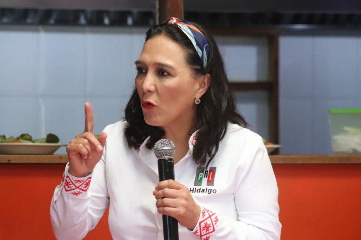 Erika Rodríguez PRI estatal