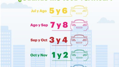 calendario verificación vehicular
