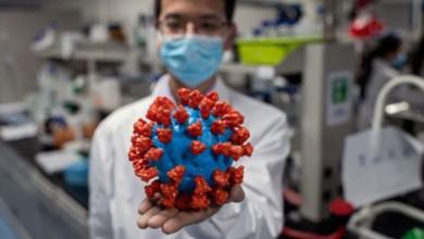 Nueva cepa de coronavirus más contagiosa llega a Estados Unidos