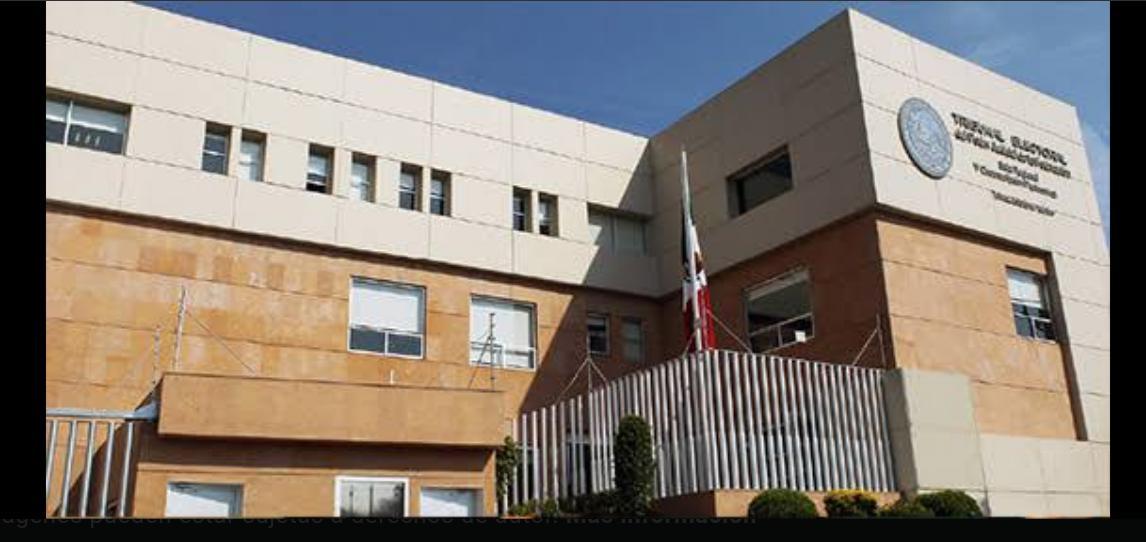 Tribunal Electoral Federal